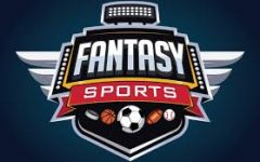 Should You Participate in Fantasy Sports? What I learned in My first year!